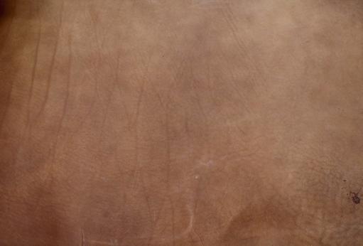 皮革の写真